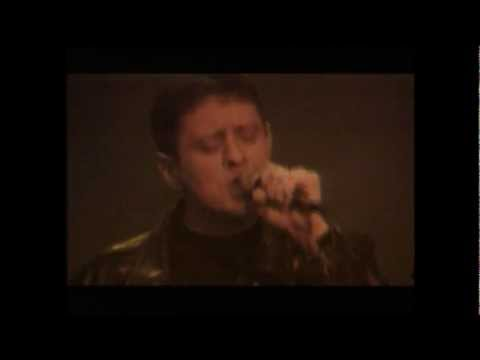 Happy Mondays - Sunshine and Love