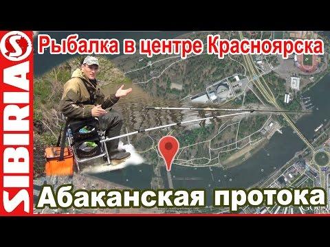 Нерестовый запрет 2018 в Краснодарском крае - Фиш Тим Россия