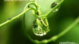 Sesenta Preguntas sobre  la Divinidad ( Parte I)