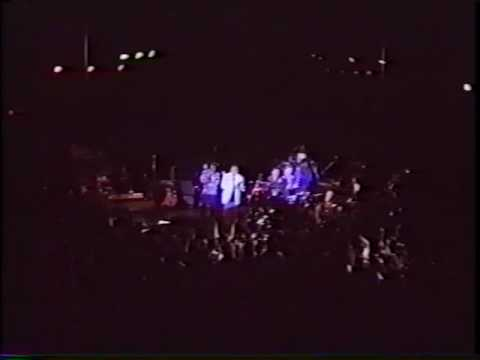 [16-16] RAIN feat.佐藤竹善(Live) - 13CATS