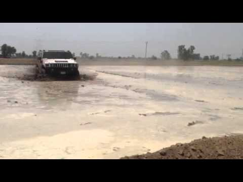California Mr Jatt Hummer H2 In Punjab Farms video