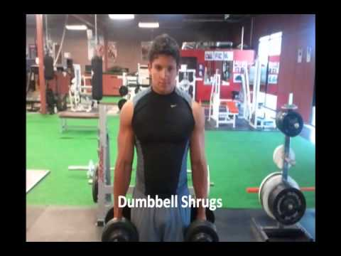 "Gyms and Trainers Highlights Andrew ""Chest & shoulder workout"""