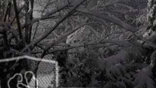 Watch Chris Tomlin Winter Snow video