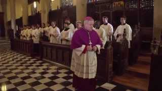 The Rosary - Joyful Mysteries (prayed by Archbishop Carlson & the seminarians)