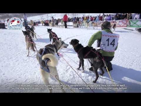 Берингия - легендарная гонка на собачьих упряжках. BERINGIA. The DIARY. part 1