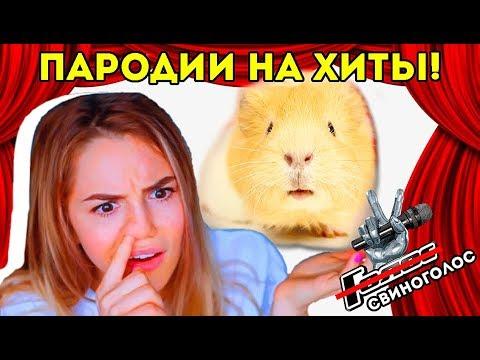 СВИНОГОЛОС 3: РОЗОВОЕ ВИНО, МЕГА ЗВЕЗДА, ЭТО МОЯ НОЧЬ 6 пародий / МАРЬЯНА РО, БУЗОВА / SvinkiShow