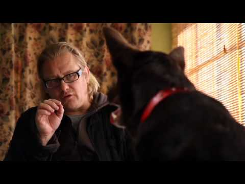 Teaser Trailer for RED DOG (2011)