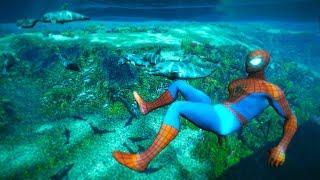 GTA 5 Water ragdolls | SPIDERMAN Jumper/Falls Compilation ep.6 (Euphoria physics FunnyMoments)