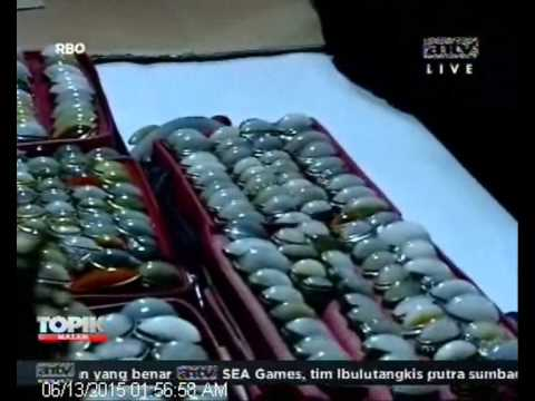 [ANTV] TOPIK Live Komunitas Pandan Tambun Bekasi