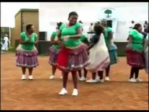 Niiko Africa Shaking Ass. video