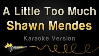 Download Lagu Shawn Mendes - A Little Too Much (Karaoke Version) Gratis STAFABAND