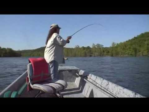 White River Arkansas Trout Fishing