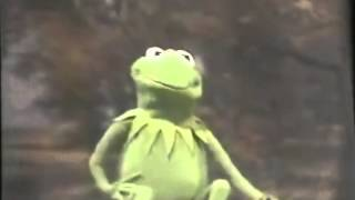 "Kermit sings Canned Heat's ""On the Road Again"""