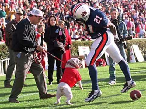 Corey Smith Every Dog Has It's Day (Georgia Football Tribute)