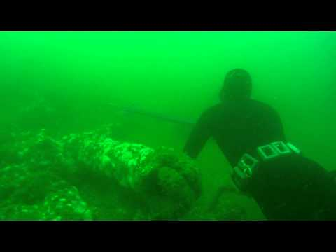 shooting black sea bass in Rhode Island