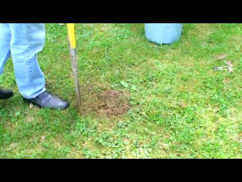 entretien de jardins detaupisation secteur lorient 56 On youtube entretien jardin