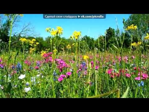 Каникулы строгого режима - Дорога цветов