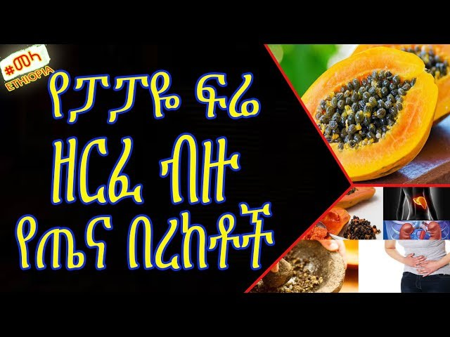 Papaya Seed Health Benefits in Amharic