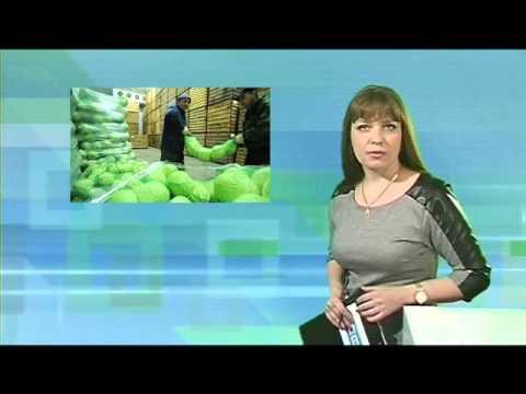 Десна-ТВ: День за днем от 28.03.2016