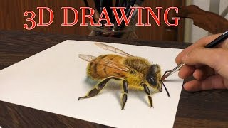 Drawing of a BEE in 3D/ Your Choise