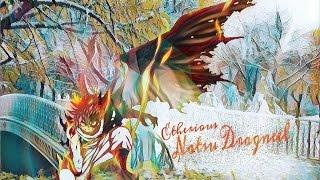Fairy Tail Episode 172 English Dub