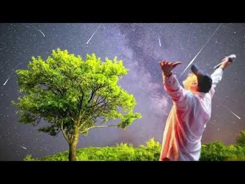 עופר לוי   מעיין הנעורים  Ofer Levi ♫