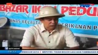 Kabar Petani Budidaya Ikan Gabus