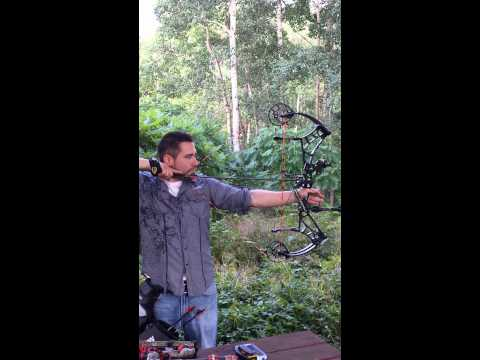 2014 bow reviews bear vs bowtech vs hoyt