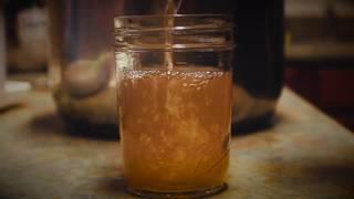 Making Homemade Apple Cider w/ Steam Juicer