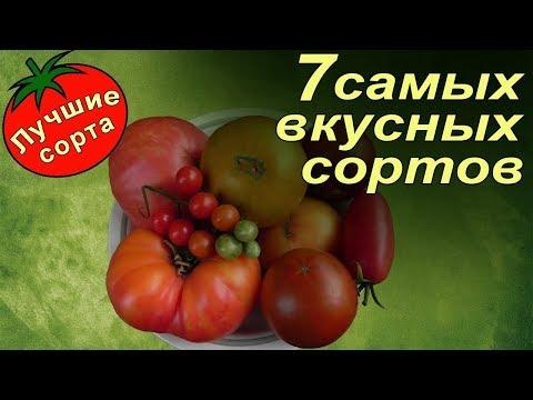 Лучшие сорта томатов  Самые вкусные сладкие помидоры 2017 года