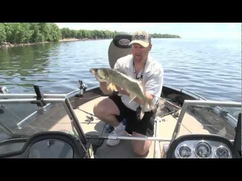 Swimbaits for Walleye