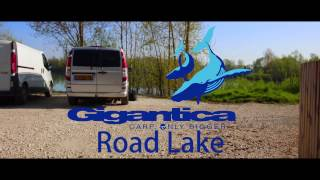 The Carp Specialist - Gigantica Carp - Road Lake