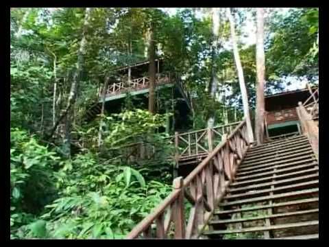 Destination: Malaysian Borneo - Part 1