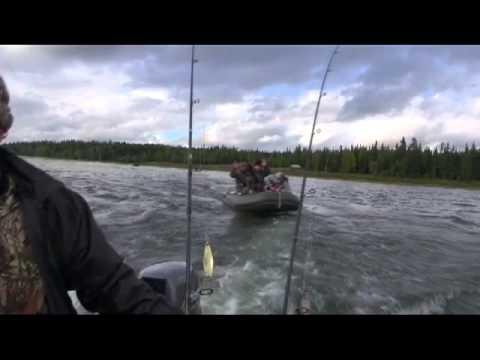 ловля окуня на глухих озерах