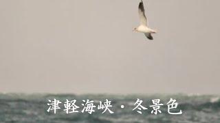 津軽海峡 冬景色 石川さゆり