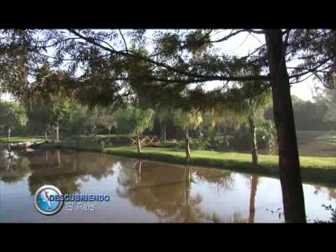BLOQUE 5 DOMINGO 7 DE SETIEMBRE- EMPRESAS PARAGUAYAS