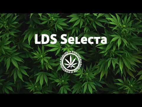 LDS Selecta - Herb (Healing Of Di Nation)