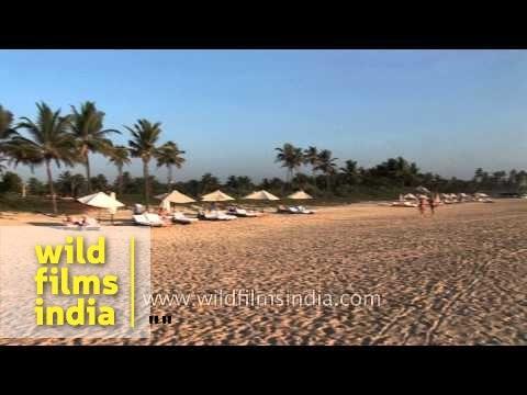 Goa : Truly a tourist paradise