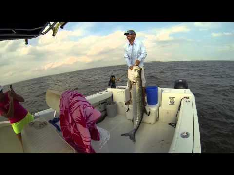 NEW!! Hilton Head Fishing Charters - OUTCAST SPORT FISHING - Hilton Head Shark Fishing