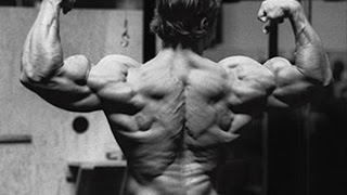 Arnold Schwarzenegger's Full Back Workout For Relentless Size