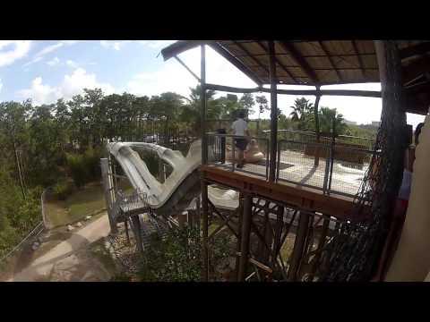 Crush N Gusher Water Slides at Typhoon Lagoon Walt Disney World - HDThrillSeeker