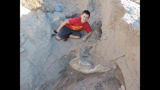 NMSU experts dig up Las Cruces boy's million-year-old fossil find