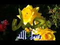 Pashto Naat Rizwanullah Nazar Tahsinullah Jalali  Ahmad Nabi Sultan Aie