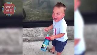 Funny zoo animals vs babies and kids compilation