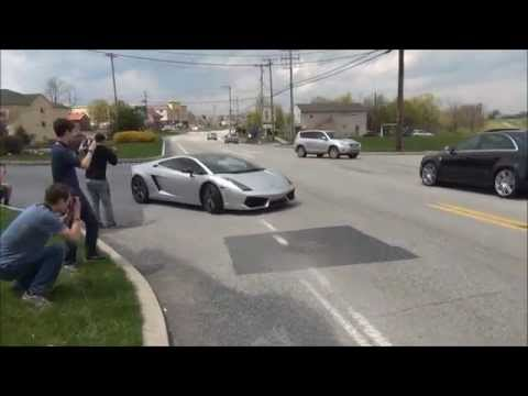 Exotic Cars Leaving 2014 Cool Cars For Cats & Canines Exotic Car Show