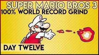 Super Mario Bros. 3 100% World Record Grind - Day 12