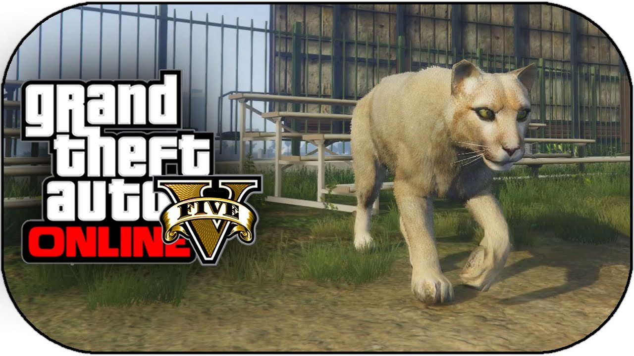 GTA 5 PS4 Next Gen - Play As Mountain Lion,Dog,Wolf & More ...