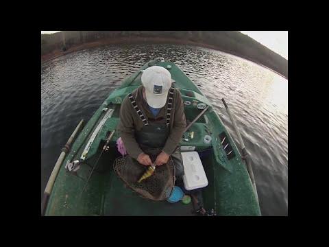 Delaware River Walleyes 11/24/14