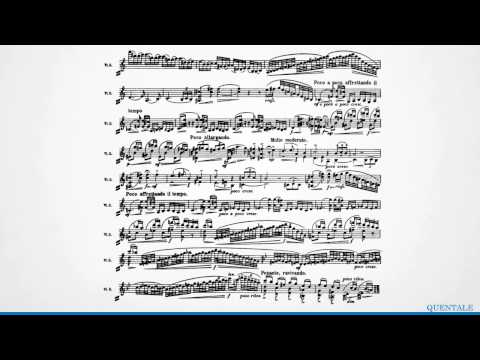 JoAnn Falleta Explores Sibelius (Full video)