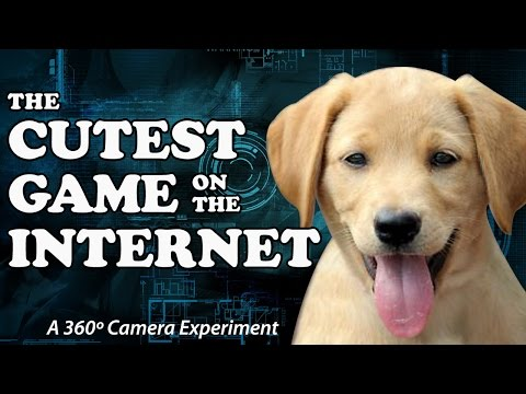 360 Camera + Puppies = The Cutest Game On The Internet